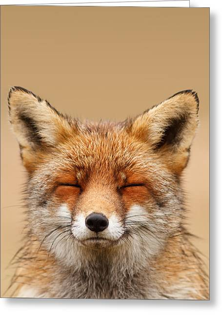 Zen Fox Series - Smiling Fox Portrait Greeting Card by Roeselien Raimond