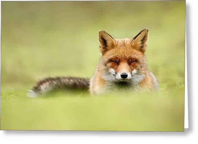 Zen Fox Series - Zen Fox In A Sea Of Green Greeting Card by Roeselien Raimond