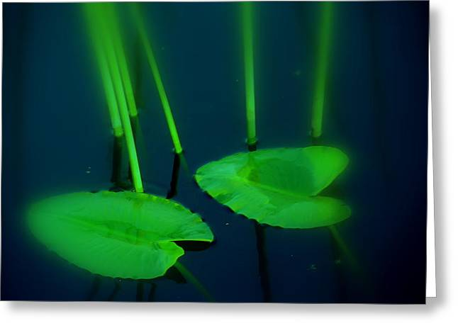 Blue And Green Photographs Greeting Cards - ZEN Photography Green  Greeting Card by Susanne Van Hulst