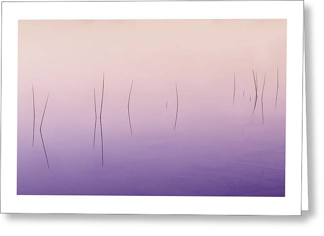 Reflection In Water Greeting Cards - Zen Reeds  Greeting Card by Thomas Schoeller