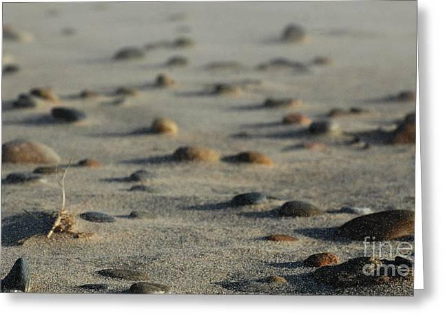 East Hampton Greeting Cards - Serene Beach Scene - Sand and Rocks Greeting Card by ArtyZen Studios - ArtyZen Home