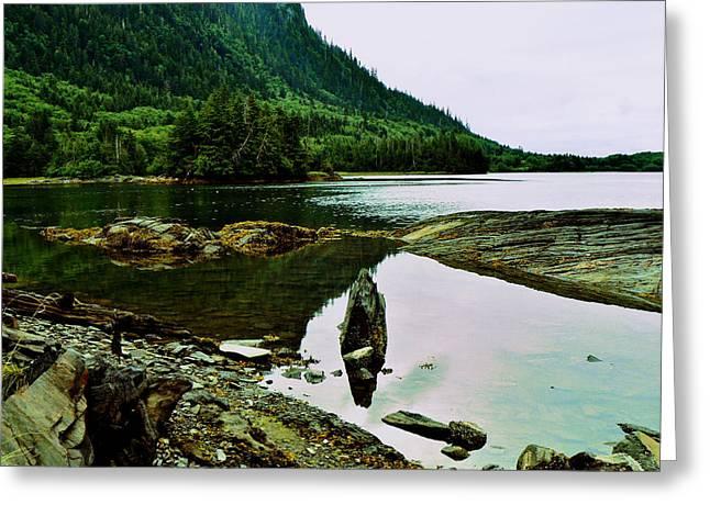 Charlotte Digital Greeting Cards - Zen Shores Haida Gwaii BC Greeting Card by Barbara St Jean