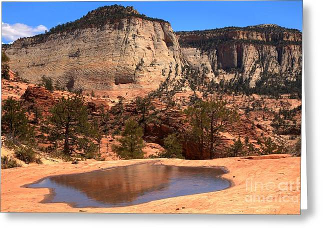 White Sandstone Greeting Cards - Zion Checkerboard Mesa Reflections Greeting Card by Adam Jewell