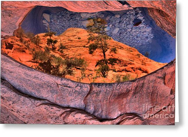 Zion Park Greeting Cards - Zion Many Pools Reflections Greeting Card by Adam Jewell