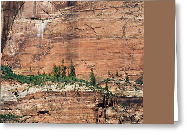 Zion National Park Photographs Greeting Cards - Zion Wall Greeting Card by Joseph Smith