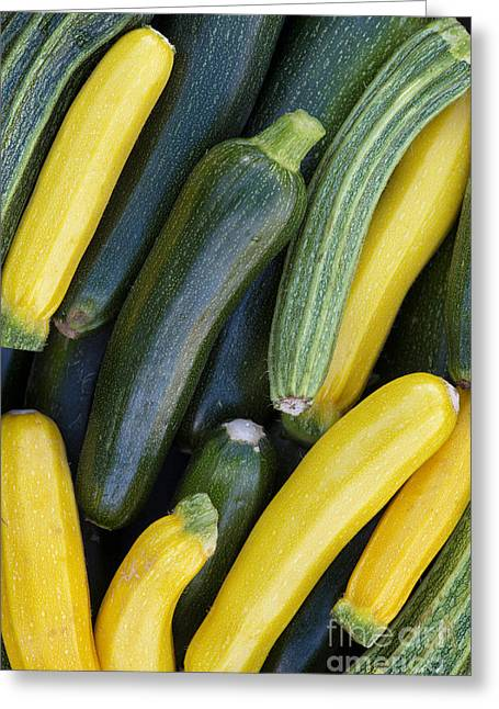 Home Grown Greeting Cards - Zucchini Harvest Greeting Card by Tim Gainey
