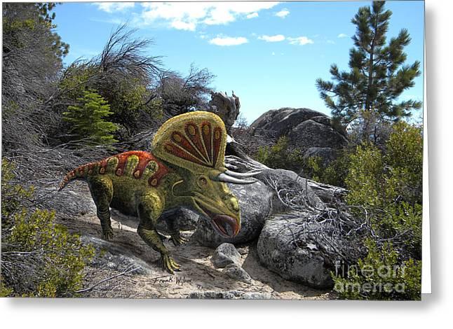 Zuniceratops Among Rocks Greeting Card by Frank Wilson