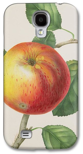 Wild Orchards Galaxy S4 Cases -  An Apple Galaxy S4 Case by Elizabeth Jane Hill