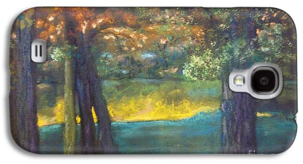 Waterscape Pastels Galaxy S4 Cases -  Blazing Autumn Light Galaxy S4 Case by Sandra McClure