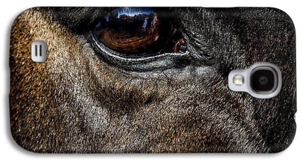 Quarter Horses Galaxy S4 Cases -  Bright Eyes - Horse Portrait Galaxy S4 Case by Holly Martin