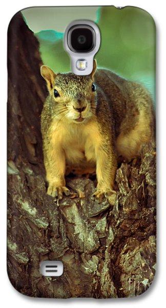 Fox Squirrel Galaxy S4 Cases -  Fox Squirrel Galaxy S4 Case by Robert Bales