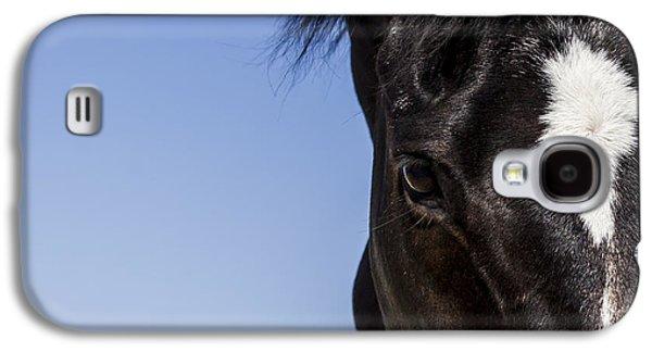 Quarter Horses Galaxy S4 Cases -  Horse - Dark Bay II Galaxy S4 Case by Holly Martin