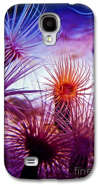 Pch Galaxy S4 Cases -  Monterey Bay Aquarium 6 Galaxy S4 Case by Micah May