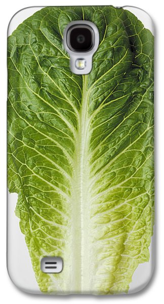 Romaine Galaxy S4 Cases - Agriculture - Closeup Of A Romaine Galaxy S4 Case by Ed Young