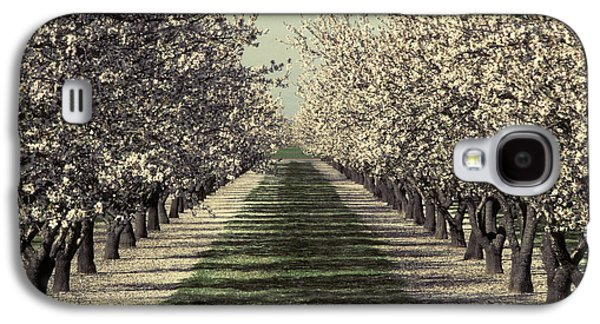Rosaceae Galaxy S4 Cases - Almond Orchard In Bloom Galaxy S4 Case by Ron Sanford