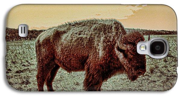 Buffalo Art Digital Art Galaxy S4 Cases - American Buffalo  Galaxy S4 Case by Tony Grider