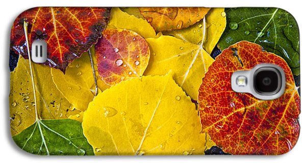 Autumn Leaf On Water Galaxy S4 Cases - Aspen Rainbow Galaxy S4 Case by Teri Virbickis