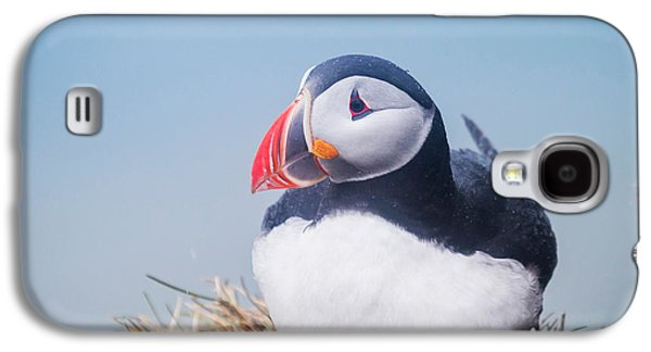 Atlantic Puffin Fratercula Arctica Galaxy S4 Case by Panoramic Images