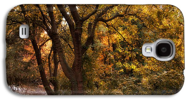 Water Fowl Galaxy S4 Cases - Autumn Glow Galaxy S4 Case by Jessica Jenney
