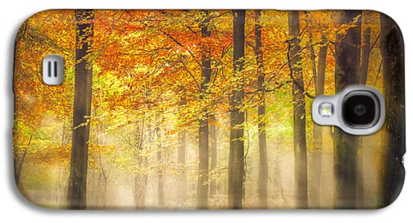 Woodlands Scene Galaxy S4 Cases - Autumn Gold Galaxy S4 Case by Ian Hufton