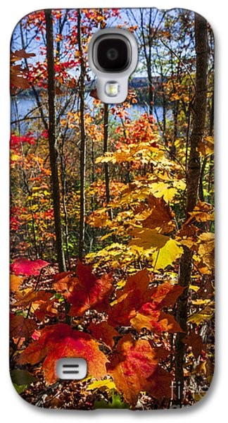 Autumn Splendor Galaxy S4 Case by Elena Elisseeva