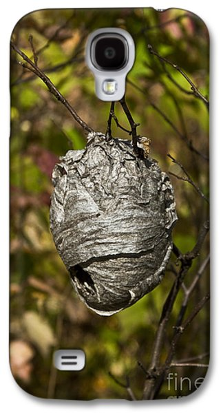 Bald-faced Hornet Nest Galaxy S4 Case by Linda Freshwaters Arndt