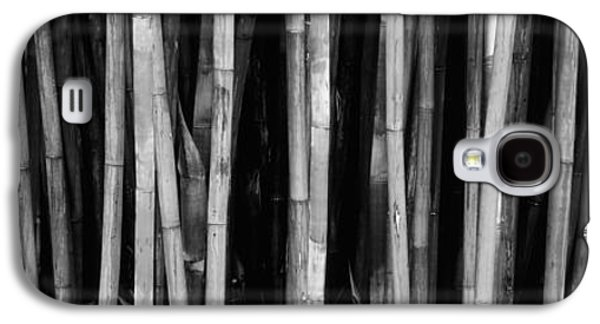 Botanical Galaxy S4 Cases - Bamboo Trees In A Botanical Garden Galaxy S4 Case by Panoramic Images