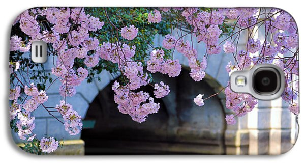 Cherry Blossoms Galaxy S4 Cases - Blossoms Galaxy S4 Case by Mitch Cat
