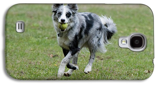 Dog Playing Ball Galaxy S4 Cases - Border Collie Retrieving A Ball Galaxy S4 Case by William H. Mullins