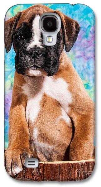 Boxer Galaxy S4 Cases - Boxer dog puppy Galaxy S4 Case by Doreen Zorn