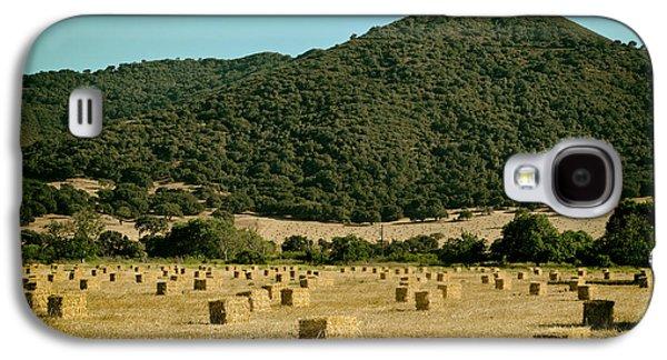 Hayfield Galaxy S4 Cases - California Hayfield  Galaxy S4 Case by Mountain Dreams
