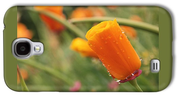 California Poppies Galaxy S4 Case by Rona Black