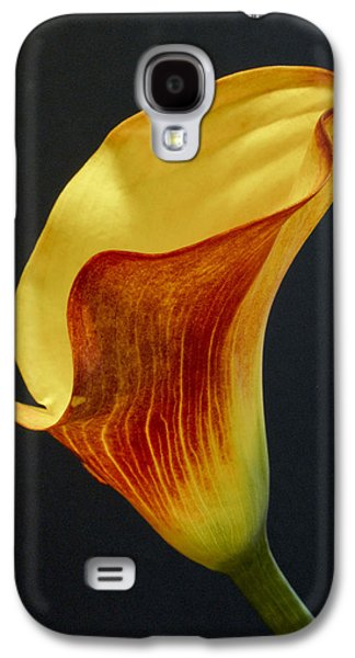 Calla Lilly Galaxy S4 Cases - Calla Lilly Galaxy S4 Case by David and Carol Kelly
