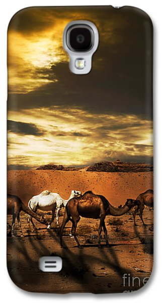 Sahara Sunlight Galaxy S4 Cases - Camels Galaxy S4 Case by Jelena Jovanovic