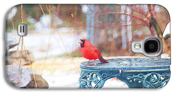 Photo Manipulation Paintings Galaxy S4 Cases - Cardinal Galaxy S4 Case by EricaMaxine  Price