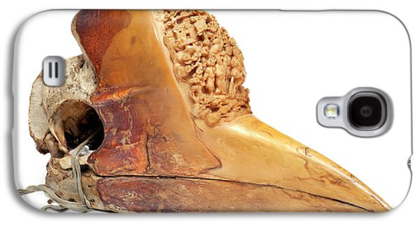 Carved Hornbill Skull Galaxy S4 Case by Natural History Museum, London