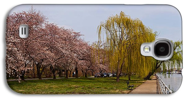 Cherry Blossoms Galaxy S4 Cases - Cherry Blossom Trees In Potomac Park Galaxy S4 Case by Panoramic Images