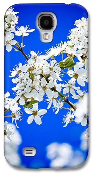 Close Focus Nature Scene Galaxy S4 Cases - Cherry blossom with blue sky Galaxy S4 Case by Raimond Klavins