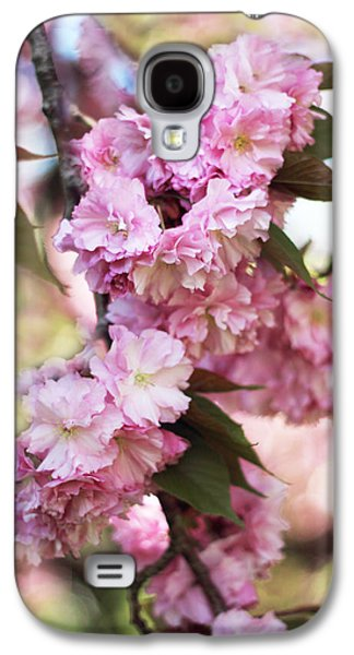 Cherry Blossoms Galaxy S4 Cases - Cherry Blossoms Galaxy S4 Case by Jessica Jenney