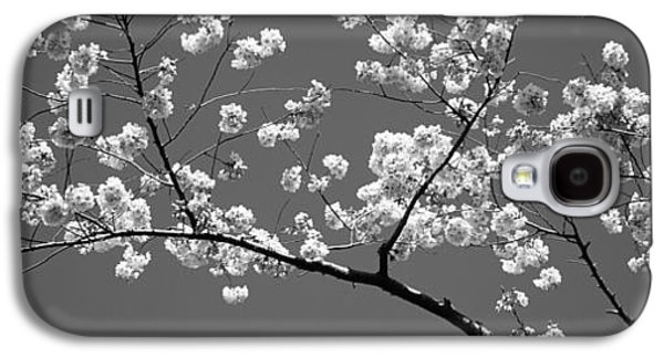 Cherry Blossoms Washington Dc Usa Galaxy S4 Case by Panoramic Images