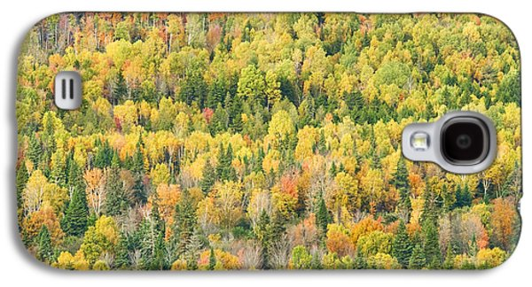 Maine Mountains Galaxy S4 Cases - Colorful Fall Forest Near Rangeley Maine Galaxy S4 Case by Keith Webber Jr