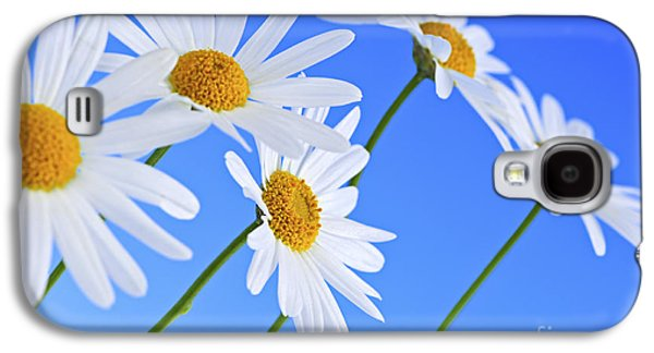 Flower Design Photographs Galaxy S4 Cases - Daisy flowers on blue background Galaxy S4 Case by Elena Elisseeva