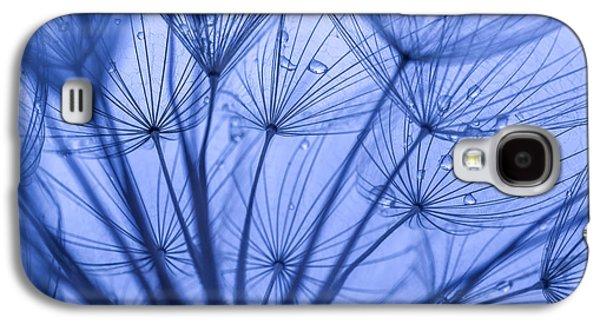 Weed Line Galaxy S4 Cases - Dandelion Art Galaxy S4 Case by Vishwanath Bhat