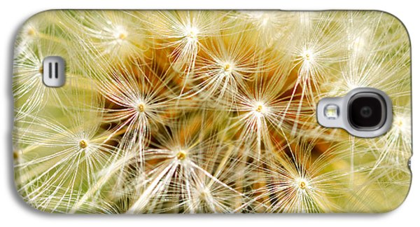 Garden Scene Mixed Media Galaxy S4 Cases - Dandelion Galaxy S4 Case by Toppart Sweden