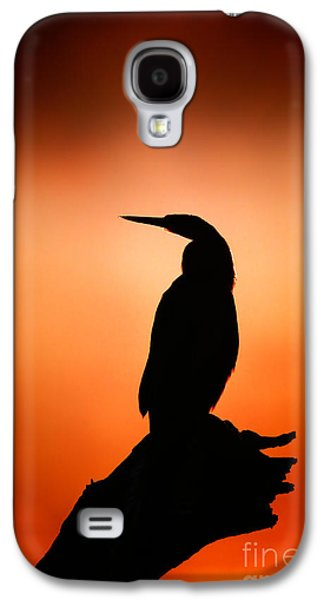 Misty Galaxy S4 Cases - Darter silhouette with misty sunrise Galaxy S4 Case by Johan Swanepoel