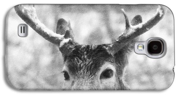 Deer Galaxy S4 Case by Todd Sherlock