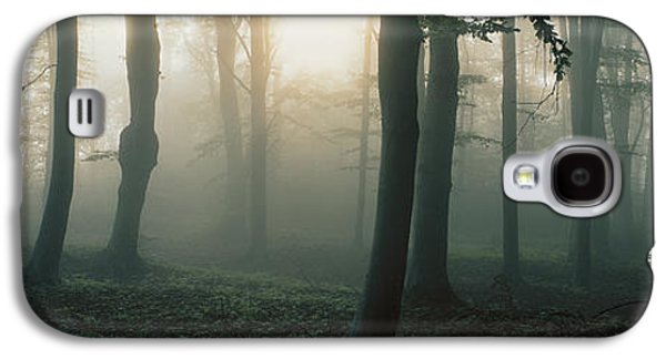 Forest Floor Galaxy S4 Cases - Ekero Uppland Sweden Galaxy S4 Case by Panoramic Images
