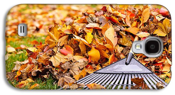 Fall Leaves With Rake Galaxy S4 Case by Elena Elisseeva