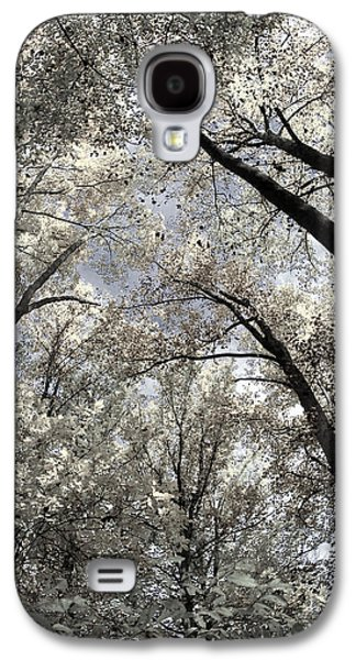 Haverford College Galaxy S4 Cases - Fall Trees Galaxy S4 Case by Judy Gallagher