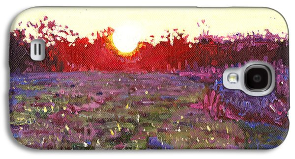Sun Galaxy S4 Cases - Farley sunset Galaxy S4 Case by Helen White